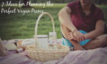 vegan picnic ideas