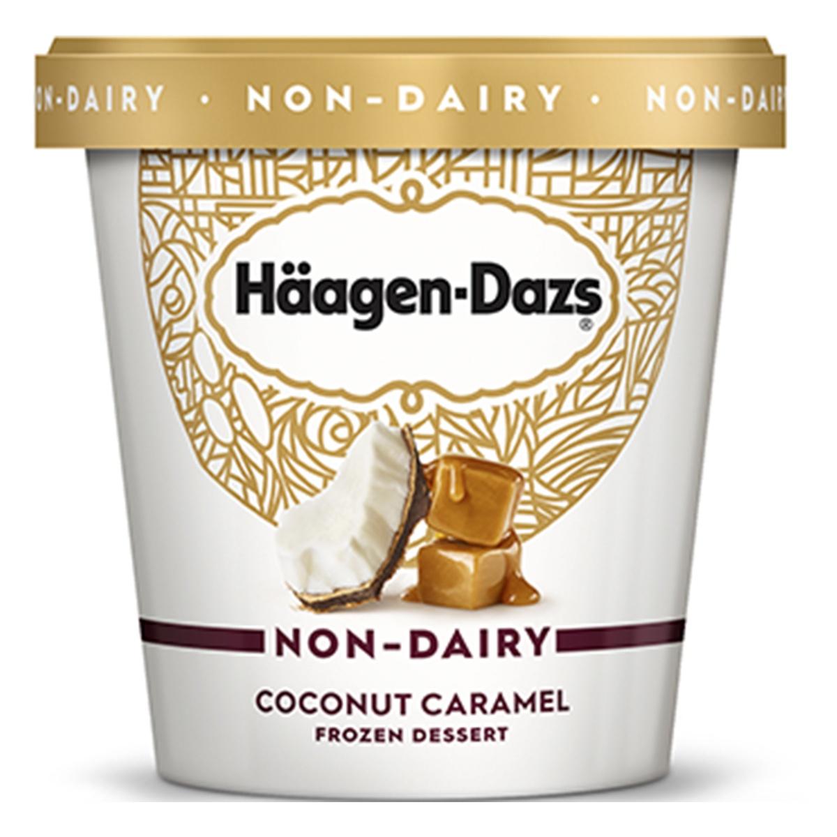 Häagen-Dazs Non-Dairy Ice Cream